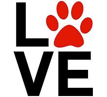 Love Dogs and/or Cats Photographic Print