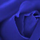 Blue Romance by Kelly Robinson