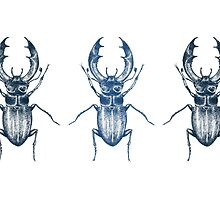 Stag Beetle | Blue by cutthecrap