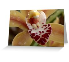 Yelow Orchid Greeting Card