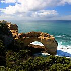The Arch by Asoka