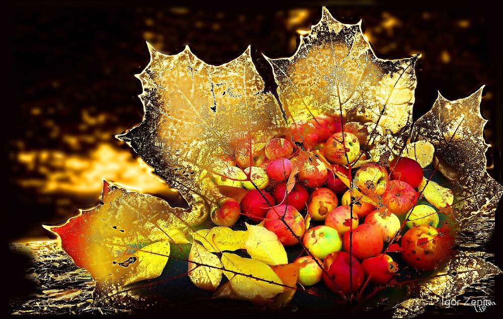 Autumn by Igor Zenin