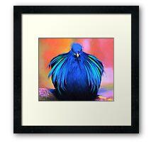 A Mystery Blue Bird Framed Print