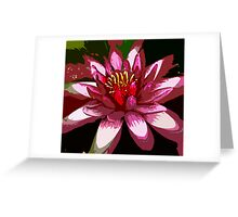 Pink Waterlilly close Greeting Card