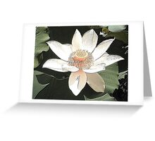 Lilly Pink White Greeting Card