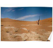 Namib Desert Poster