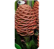 Chocolate Ball Ginger Flower iPhone Case/Skin