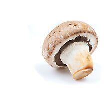brown champignon Photographic Print