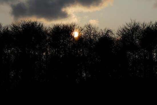 Sunrise by Aneurysm