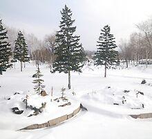 Snowscape by Aneurysm