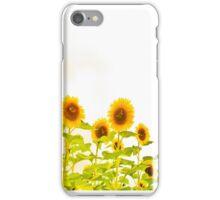 Sunflower Power Leggings iPhone Case/Skin