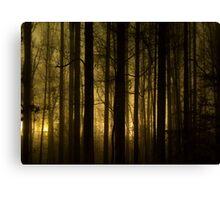 Glow 1 Canvas Print