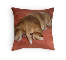 Iulie Throw Pillow