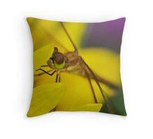 Dragonfly closeup Throw Pillow