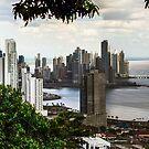 Panama City by Bernai Velarde