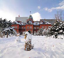 Hokkaido Government Building by Aneurysm