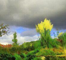 Pampas Grass by Mick Yates