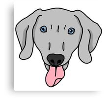 Playful Weimaraner Canvas Print