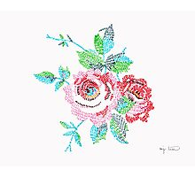 Rose Embroidery Illustration Photographic Print