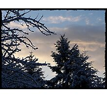 Wintery Day Photographic Print