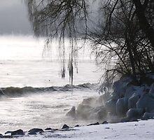 Frozen  by monaiman
