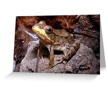 Green Leopard Frog Greeting Card
