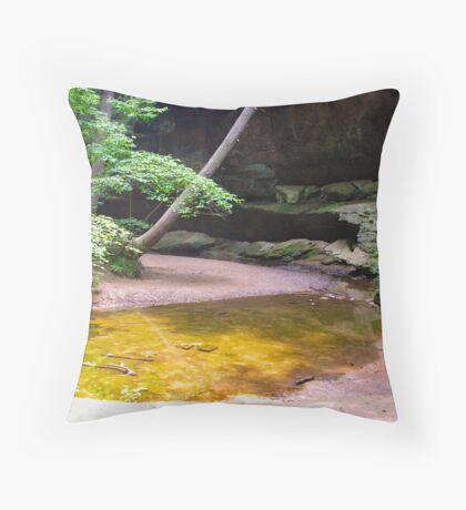 still creek Throw Pillow