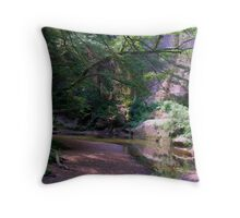 running water at the base of a cliff Throw Pillow
