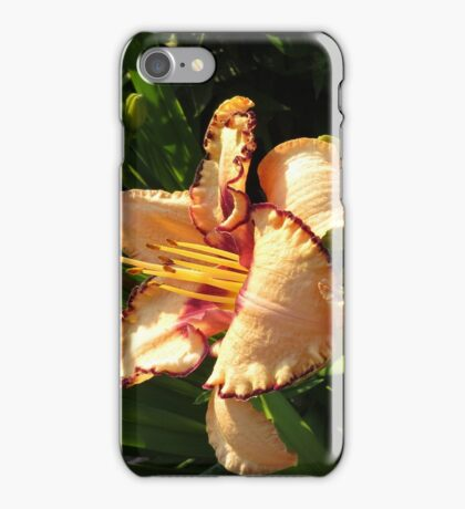 Oriental Peach Lily Flowers iPhone Case/Skin