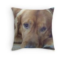 Chirstmas Dog(Comet Mudge) Throw Pillow