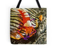Emperor Shrimp on Nudibranch Tote Bag