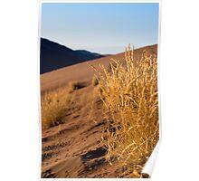 Dune 45 Poster