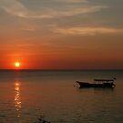 Zanzibar by Courtney Goddard