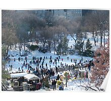 Wollman Rink, Central Park in Snow Poster