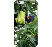 Three for the pear feast iPhone Case/Skin