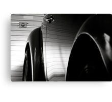 Bug In The Shed Canvas Print