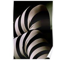 Stripes!~ Poster