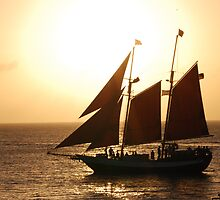 Sunset in Key West by julie08