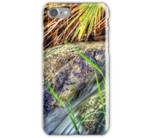 Indian Canyons 05 Andreas Creek iPhone Case/Skin