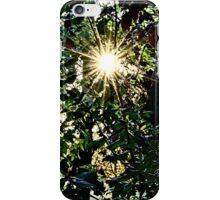 Sun rays  through trees iPhone Case/Skin