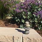 Balancing Act by Skitty Vasquez