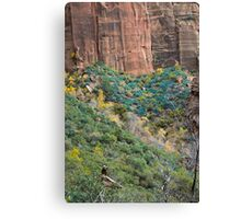Thoughts in nature Canvas Print