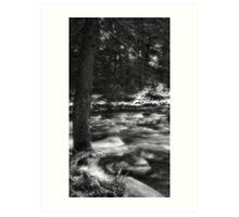 Winters rush Art Print