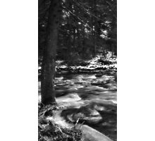 Winters rush Photographic Print