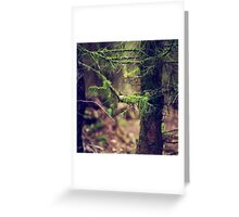 { where the moss grows } Greeting Card