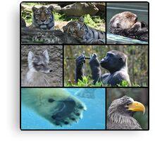 Wildlife Collage 1 Canvas Print