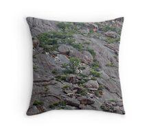 Grampians Rockface V02 - Elephants Hide Throw Pillow