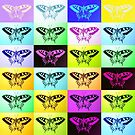 butterflies by cathyjacobs