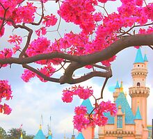 A pink dream by disneylandaily
