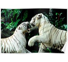 Fighting Tigers Poster